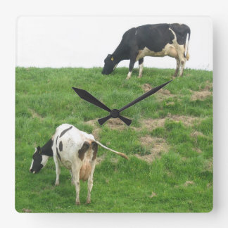 Cows Clock