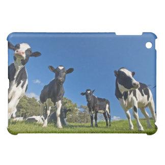Cows feeding on pasture iPad mini case