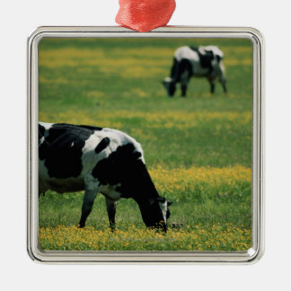 Cows in a Field of Flowers Silver-Colored Square Decoration