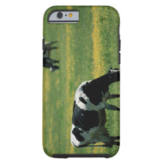 Cows in a Field of Flowers Tough iPhone 6 Case