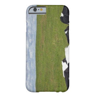 Cows in a pasture. barely there iPhone 6 case