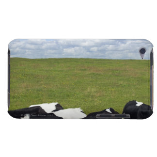Cows in a pasture. barely there iPod case