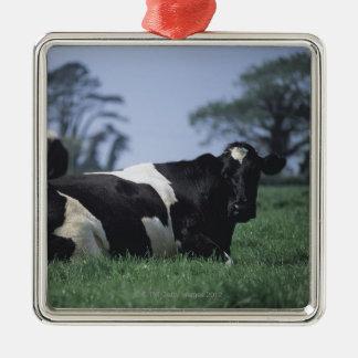 cows in a pasture Silver-Colored square decoration