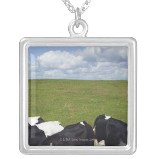 Cows in a pasture. silver plated necklace