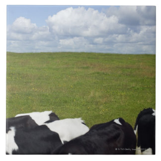Cows in a pasture tile