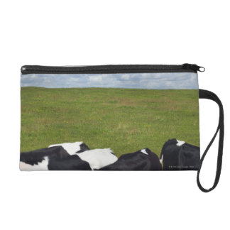 Cows in a pasture wristlet