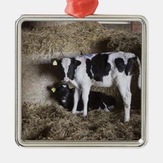 Cows in barn 3 Silver-Colored square decoration