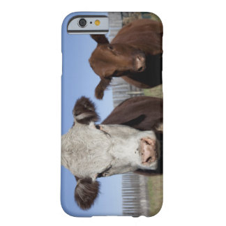 Cows in fenced area barely there iPhone 6 case