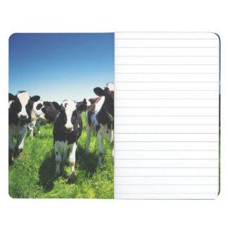 Cows in the field, Betsukai town, Hokkaido Journal
