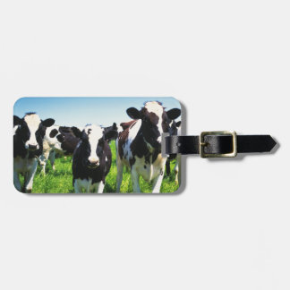 Cows in the field, Betsukai town, Hokkaido Luggage Tag