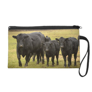 Cows in the rain wristlet