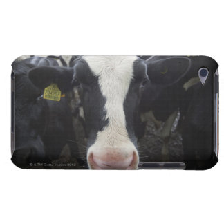 Cows iPod Touch Case-Mate Case