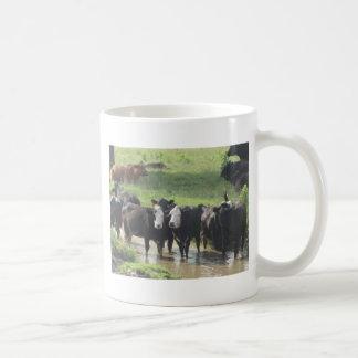 ~ Cows Lookin' Back ~ Basic White Mug