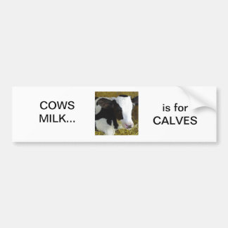 Cows milk is for calves bumper sticker