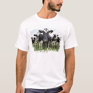 Cows standing in a row looking at camera T-Shirt