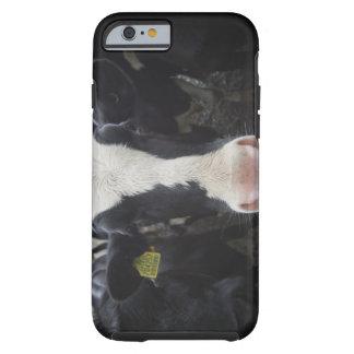Cows Tough iPhone 6 Case
