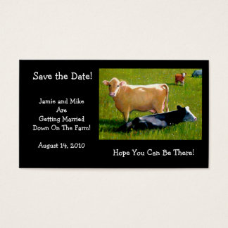 COWS: WEDDING:FARM: SAVE DATE CARD
