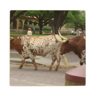 cows wood coaster