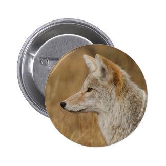 coyote 6 cm round badge