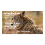 Coyote Business Card