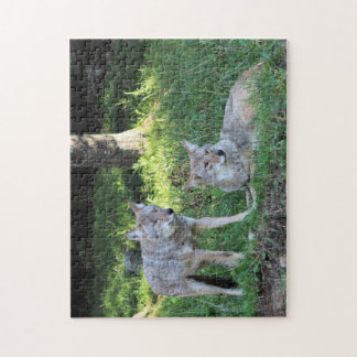 Coyote couple jigsaw puzzle