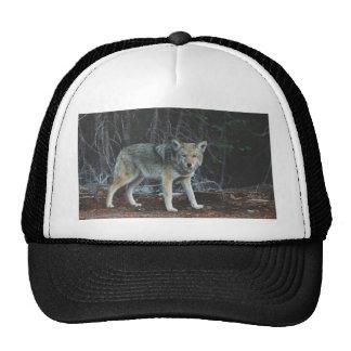 Coyote Hunting Cap