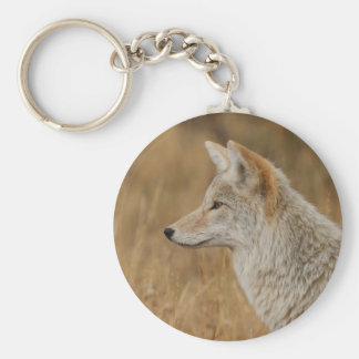coyote basic round button key ring