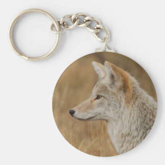coyote key ring