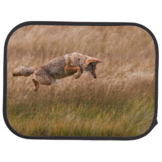 Coyote Leaping - Gibbon Meadows Car Mat
