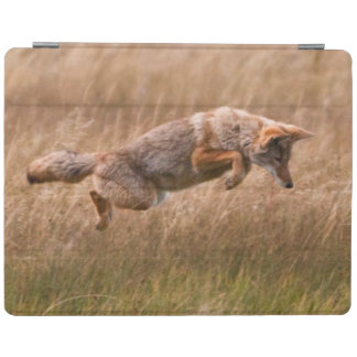 Coyote Leaping - Gibbon Meadows iPad Cover