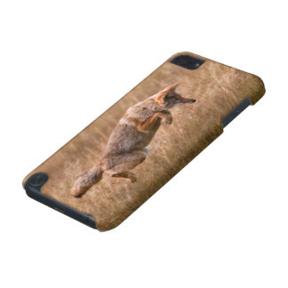 Coyote Leaping - Gibbon Meadows iPod Touch 5G Cover