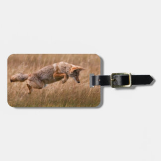Coyote Leaping - Gibbon Meadows Luggage Tag