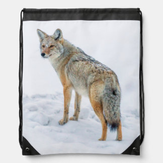 Coyote on alert in snow drawstring bag