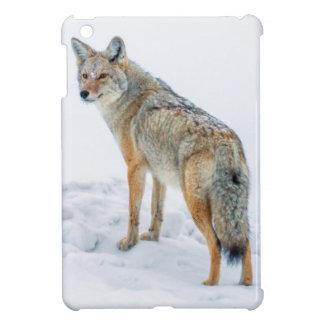 Coyote on alert in snow iPad mini cases