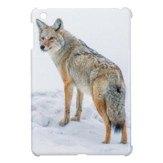 Coyote on alert in snow iPad mini cover