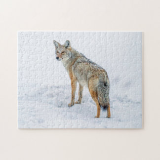 Coyote on alert in snow jigsaw puzzle