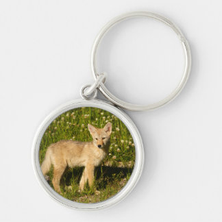 coyote Silver-Colored round key ring