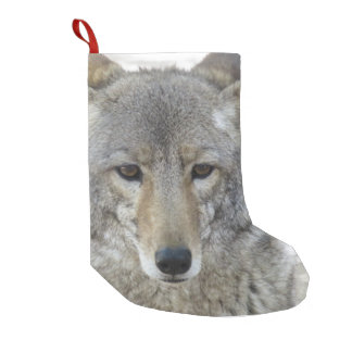 Coyote - small christmas stocking