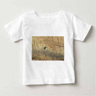 Coyote Shirts