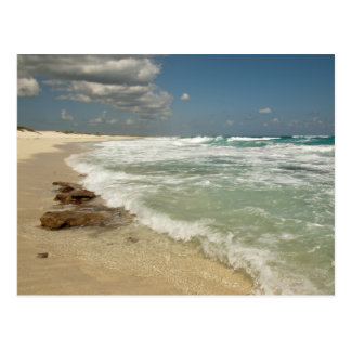 Cozumel Beach Postcard