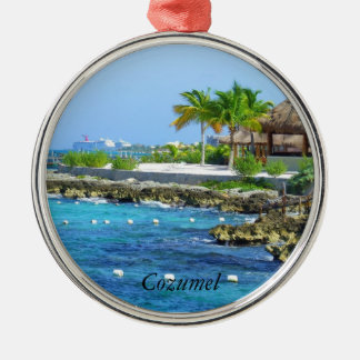 Cozumel Chankanaab Park Travel Christmas Ornament