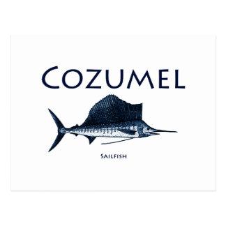 Cozumel Sailfish Postcard