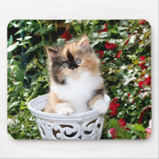 Cozy Kittens Calico Persian Kittens Mousepad