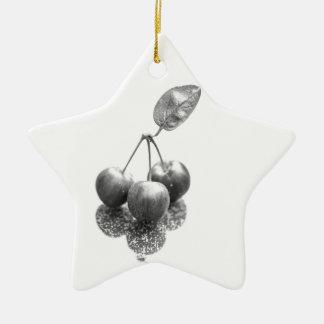 Crab Appels Ceramic Star Decoration