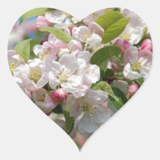 Crab apple blossom heart sticker