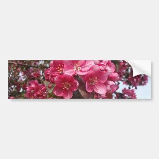Crab Apple Blossoms Bumper Sticker