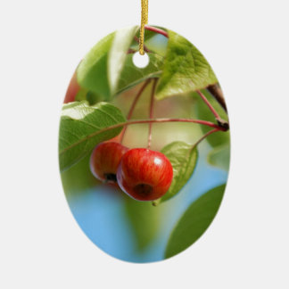 Crab apples christmas ornament