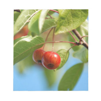 Crab apples notepad