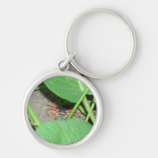 Crab hiding keyring Silver-Colored round key ring
