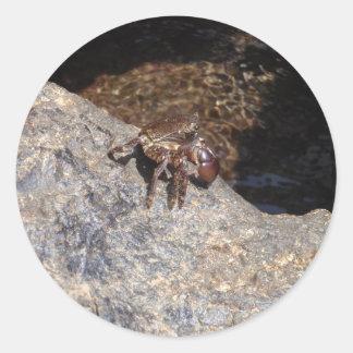 Crab In The Black Sea Classic Round Sticker